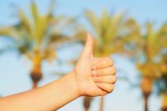 Hand het tonen beduimelt upl tegen palmen Royalty-vrije Stock Foto