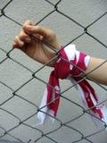 Hand hinter einem Zaun lizenzfreie stockbilder