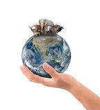 Hand hold animal on the earth Stock Image