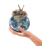Hand hold animal on the earth Stock Photo