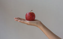 Hand hold apple Royalty Free Stock Photo