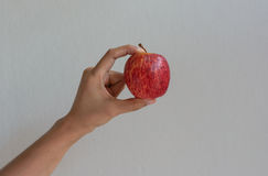Hand hold apple Stock Images