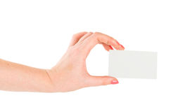 Hand hold blank card Royalty Free Stock Image