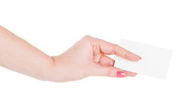 Hand hold blank business card Royalty Free Stock Photo