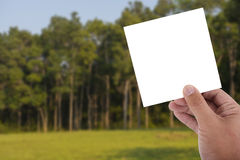 Hand hold blank paper over blur image of tree. In forest Stock Photos