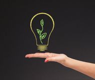 Hand hold bright light bulb with board Royalty Free Stock Image