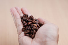 Hand Hold The Coffee Bean Stock Photo