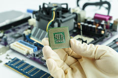 Hand hold CPU to check problem. And repair or change new one into main circuit board Royalty Free Stock Images