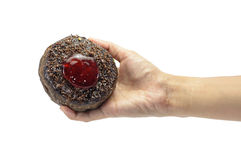 Hand hold donuts Stock Photography