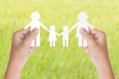 Hand hold family model over green background Royalty Free Stock Photos
