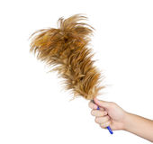 Hand hold feather broom on white background Royalty Free Stock Image