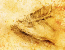 Hand hold a feather quill pen on the letter and envelope, pencil sketch on paper, sepia and vintage effect. Stock Photos