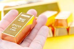 Hand hold gold bars Stock Images