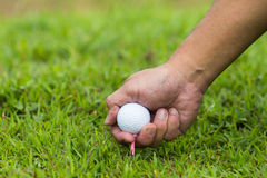 Hand hold golf ball Royalty Free Stock Images