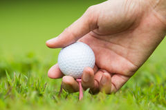 Hand hold golf ball Royalty Free Stock Photos