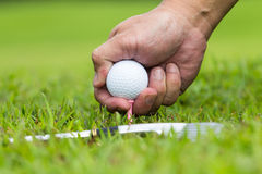 Hand hold golf ball Royalty Free Stock Image