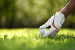 Hand hold golf ball with tee on golf course royalty free stock photo
