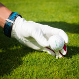 Hand hold golf ball with tee on course, close up Royalty Free Stock Photo