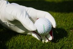 Hand hold golf ball with tee on course, close up stock image