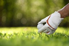 Hand hold golf ball with tee on golf course royalty free stock photos