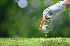 Hand hold golf ball with tee. On golf course royalty free stock photography