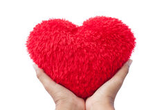 Hand hold Red  hart Stock Photography