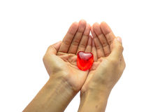 Hand hold single ice of red heart isolated Royalty Free Stock Image