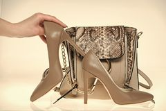 Hand hold stilettos at handbag on white background. High heel shoes and female bag of grey color, leather material. Fashion, style, accessory concept royalty free stock image