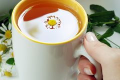 Hand hold teacup Royalty Free Stock Photos
