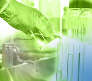 Hand hold the test tubes Stock Image