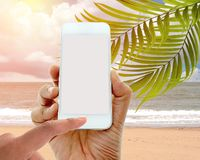 Hand hold and touch screen smart phone on coconut palm trees Stock Images