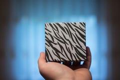 Hand hold zebra patterns gift box Stock Images