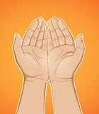Hand Holding. Detailed illustration of a hand in holding positiont Royalty Free Stock Images