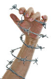 Hand Holding A Barbed Wire Stock Photos