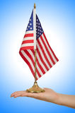 Hand holding american flag Stock Images