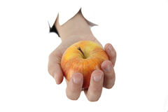 Hand is holding a apple. Female hand is holding a apple on a white background Stock Photos