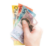 Hand holding Australian bank notes. Hand holding circulated Australian money, isolated on white Stock Images