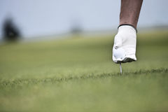 Hand holding ball and tee at golf course Royalty Free Stock Photo