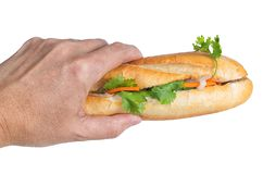 Hand holding Banh Mi, Vietnamese sandwich royalty free stock images