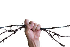 Hand holding barb wire fence Royalty Free Stock Photography