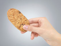 Hand holding biscuit Stock Photography