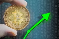 Hand holding bitcoin price rising and increase value of BTC. Trading and holding coin with digital 1s and 0s. Bitcoin price rising and increase value of BTC stock images