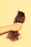 Hand holding black hair Stock Photos