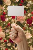 Hand Holding Blank Card In Front of Decorated Christmas Tree. Royalty Free Stock Image