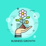 Hand holding blooming plant with dollar coin instead of leaves. Business growth, development strategy, increase in Stock Images