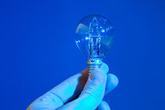 Hand holding a blue bulb isolated Royalty Free Stock Image