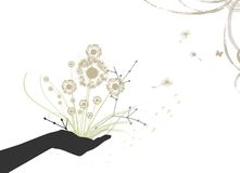 A hand is holding a a bouquet Royalty Free Stock Image
