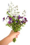 Hand holding bouquet of flowers. Bouquet of wild flowers given away Stock Photography