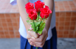 Hand holding bouquet of red roses Royalty Free Stock Images