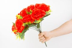 Hand Holding Bouquet Of Red Roses. For St. Valentine`s Day On White Background Royalty Free Stock Photos